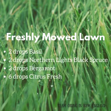 Freshly Mowed Lawn Diffuser Blend