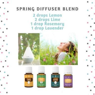 Spring Diffuser Blend